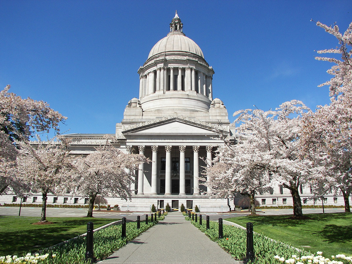 Capitol-Building-with-Cherry-Blossoms-Olympia